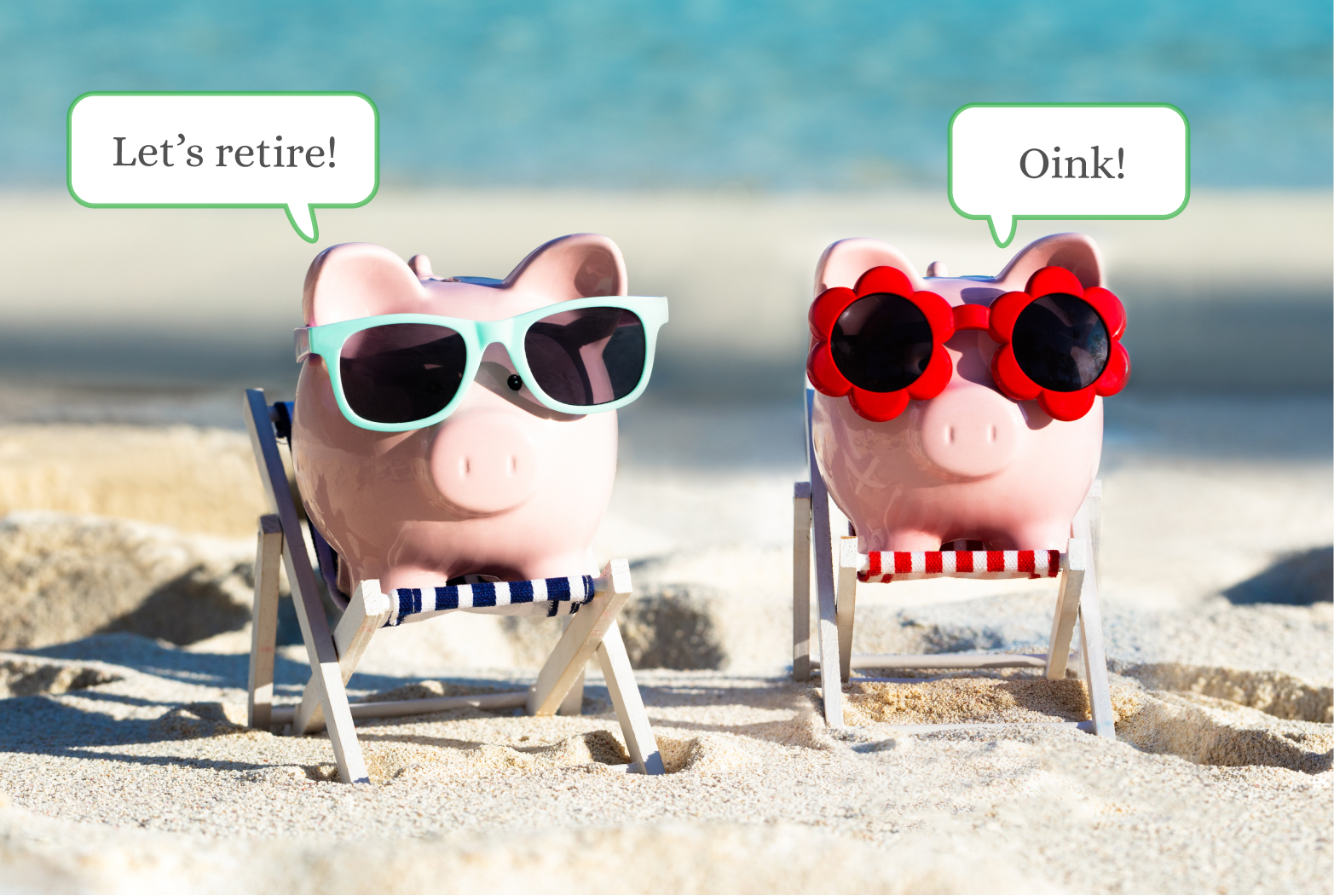 401(k) Optimizer Piggies
